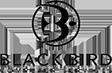 BlackBirdcs